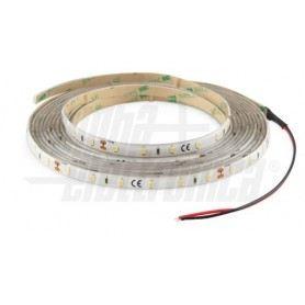 Nastro Led 60Led/m 3528 - 24V - 4,8W/m - Bianco Freddo IP65 JO365/04824/31/PWAlpha Elettronica